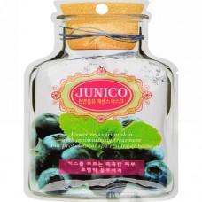 Тканевая маска для лица Mijin Junico Blueberry Essence Mask c экстрактом черники, 25 гр.